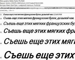 О важности шрифтов в полиграфии